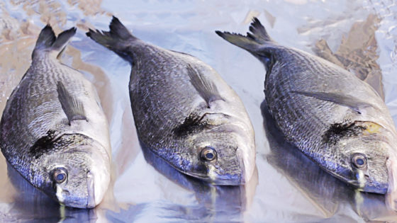 Рецепт рийета из рыбы с фото